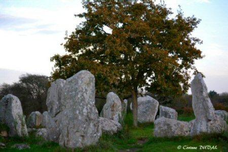 Menhirs de Bretagne